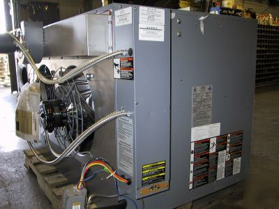Dayton Natural Gas 300 000 Btu Fuel Trimmer 4lx64